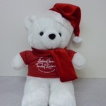 Get Your Christmas Hope Bear Today!